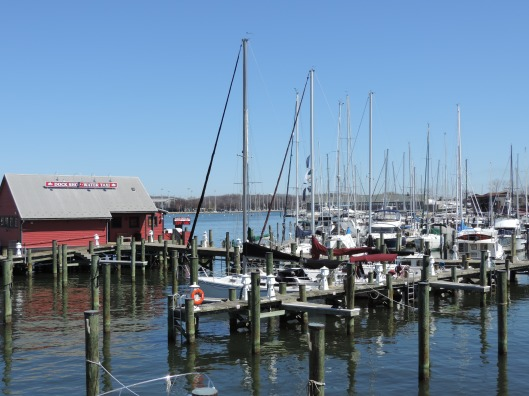 The Chesapeake Bay at Annapolis.