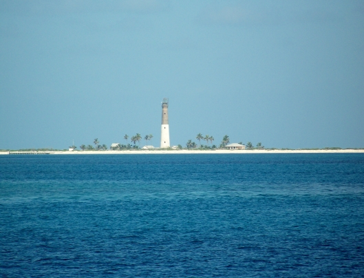The lighthouse at Loggerhead Key was built in 1858. Loggerhead Key is protected as a nesting site for Loggerhead turtles, who return to the  Key each year to lay their eggs.