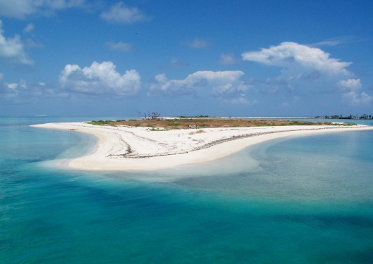Other islands in the Dry Tortugas are closed during certain times of the year to allow for the nesting of different bids.