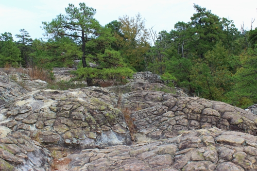 "These are the ""turtle "" rocks at Petit Jean, an unusual geologic site for sure."