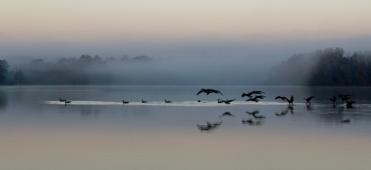 Once again, the view toward the west, as the geese awoke to the new day was as spectacular as the view in the east.