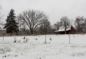 After leaving the park, I went for a ride. I found this barn outside of town. How pretty snow is...how silent and how very special.