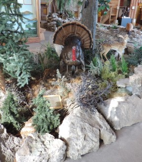 One of my students' favorite displays was the nature display. The display, consisting of a beaver pond, a bubbling spring, a prairie, and a hillside cutaway, helps visitors learn about the plants and animals that were encountered by the Corps.