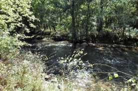 This is the site of Gibson's Mill. One can only imagine the turmoil people in the community felt when Southern forces set up camp next to the mill, and Union forces crossed over the creek at the site of the mill.