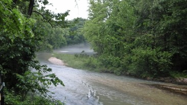One morning, a rainy, humid morning, we saw this fog roll across the spring waters. It was worth getting wet.