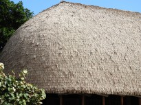 Buildings in Polynesia were made of grasses and used no nails...they were beautiful!
