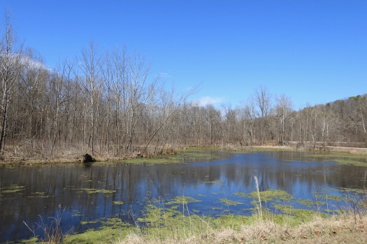 The Lake at Montauk State Park